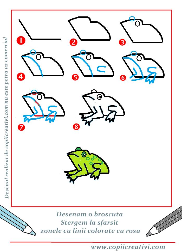 Cum desenam o broascuta