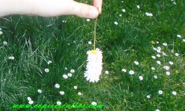 lantisor-din-flori