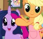Pony Hairy Salon