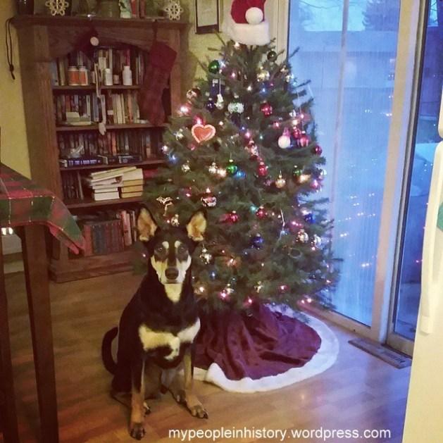 Christmas Enzo