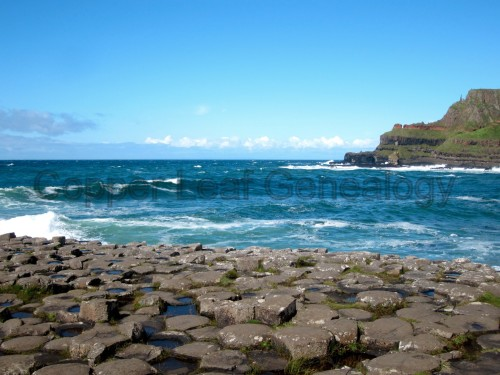Giant's Causeway in Northern Ireland. Photo taken by Nichelle Barra, July 2012