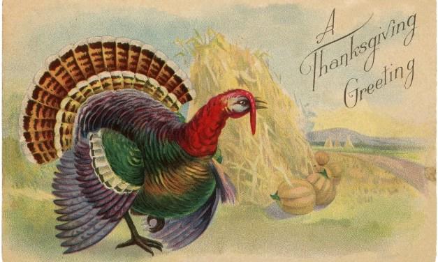The First Cajun Thanksgiving