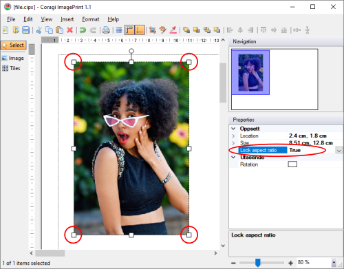 Lock the aspect ratio while resizing an image.