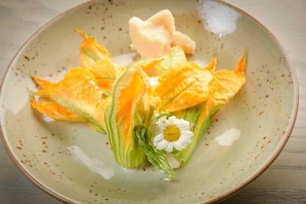 Zucca Coral Gables Restaurant Flower