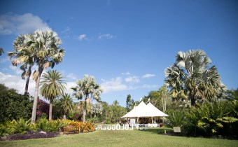 Unique Valentine's Date Ideas in Coral Gables: Valentines Day concert at Fairchild garden
