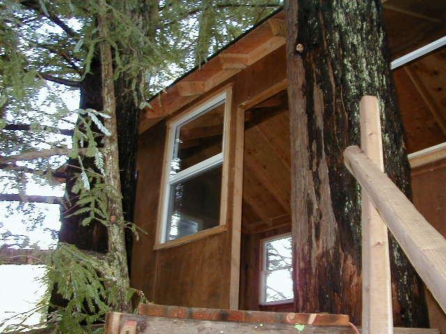 Treehouse Door