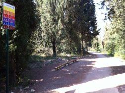 Riqualificazione Parco della Trinità: il punto sui lavori e cosa ancora c'è da fare 13