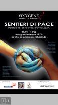 """""""Sentieri di pace"""" in mostra fino al 14 febbraio 15"""