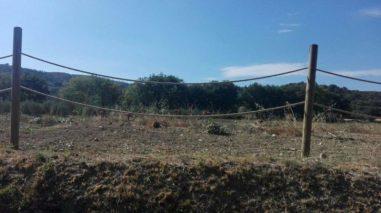 """""""Le serre del progetto mense secche e abbandonate"""", la denuncia del M5S con tanto di foto 1"""