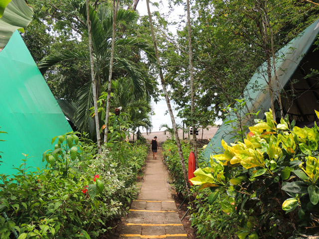 path-of-tent