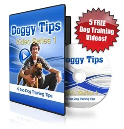 5-Free-Doggy-Tips-Videos-Flash-250