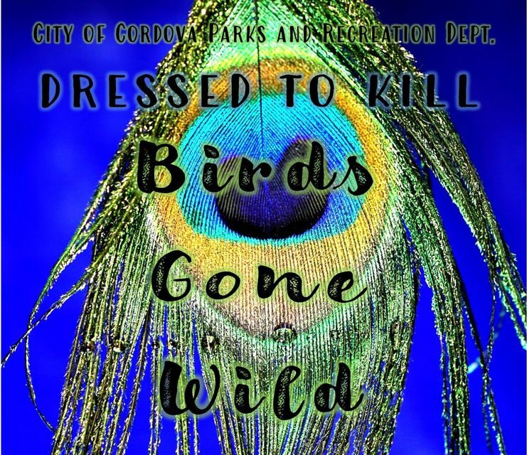 Birds Gone Virtually Wild