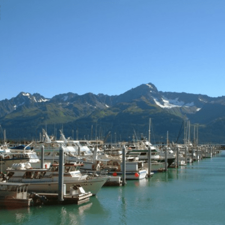 Cordova Alaska Harbor