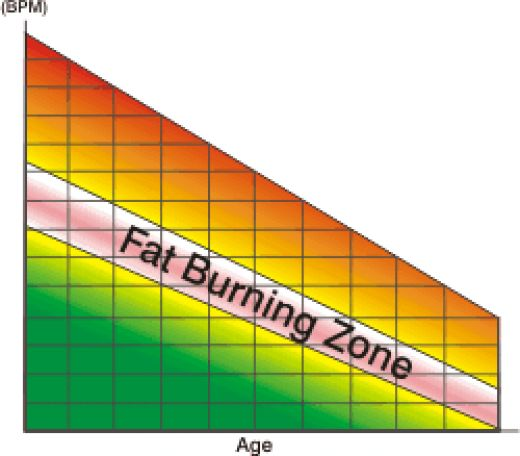 Is the FatBurning Zone a Myth  Nordictrack Coupons