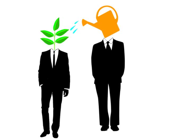 Výsledek obrázku pro mentorship