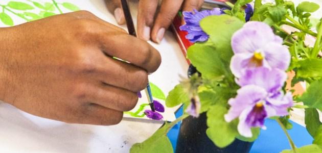 Botanical Drawing & colour techniques