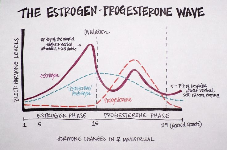 estrogen levels and weight loss
