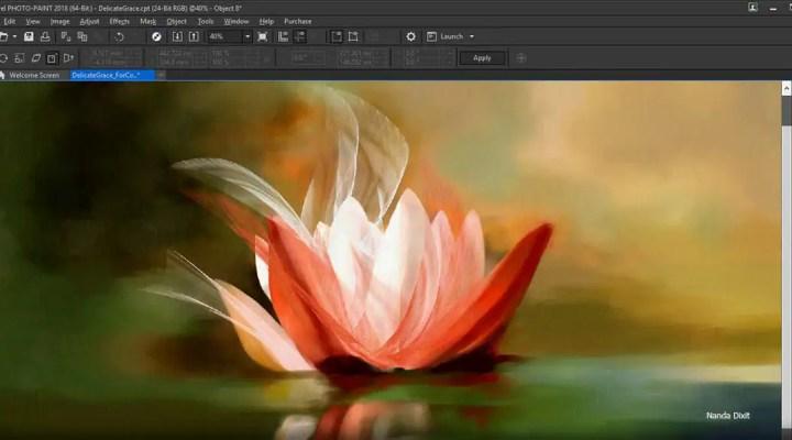 Coreldraw Graphics Suite 2019 Free Download Full Version