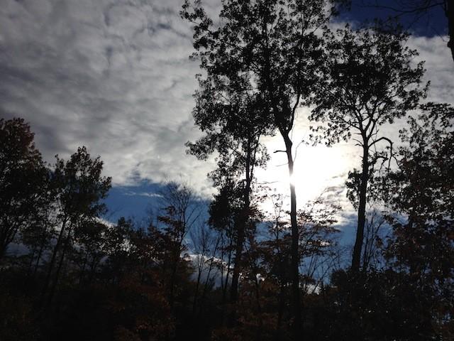 Van Gogh Sky