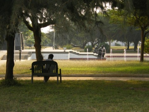 A person on a bench under a large shade tree