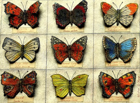Papillon (Butterfly Collection)