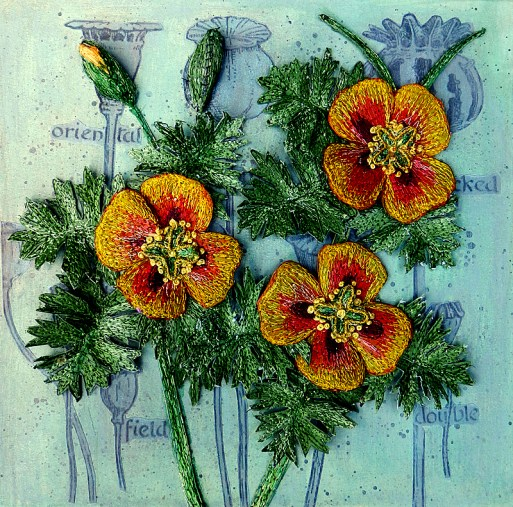 Horned Poppy - Craft Centre and Design Gallery