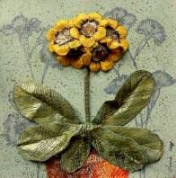 Yellow Auricula