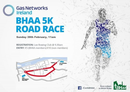 Gas Networks Ireland 5k 2016 - Cork BHAA
