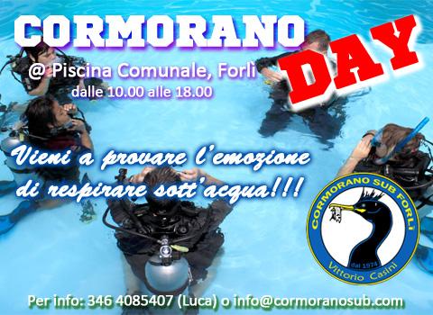 Cormorano Day 3 2013
