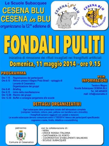 locandina 2014