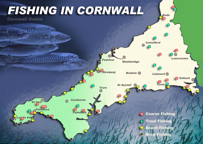 Image result for river fishing cornwall