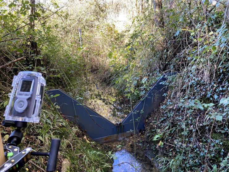A metal barrier across a small stream