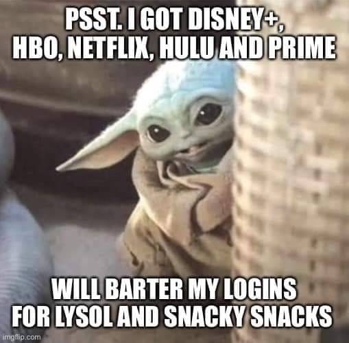 Psst I got Disney Plus – HBO – Netflix – Will barter my logins for lysol and snacky snacks