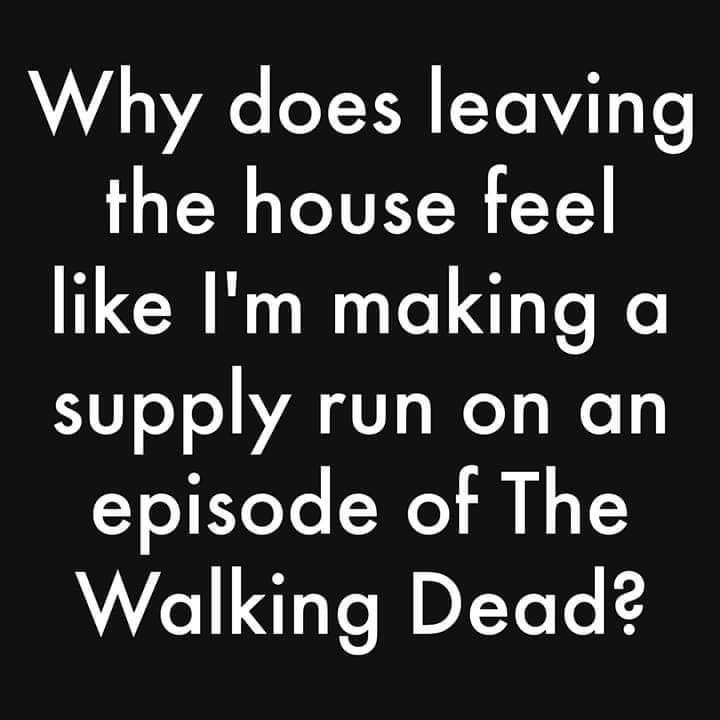 Why does leaving your house feel like im making a supply run on an episode of The Walking Dead