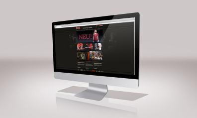 Paffen Sport Boxing – Gestaltung Webshop