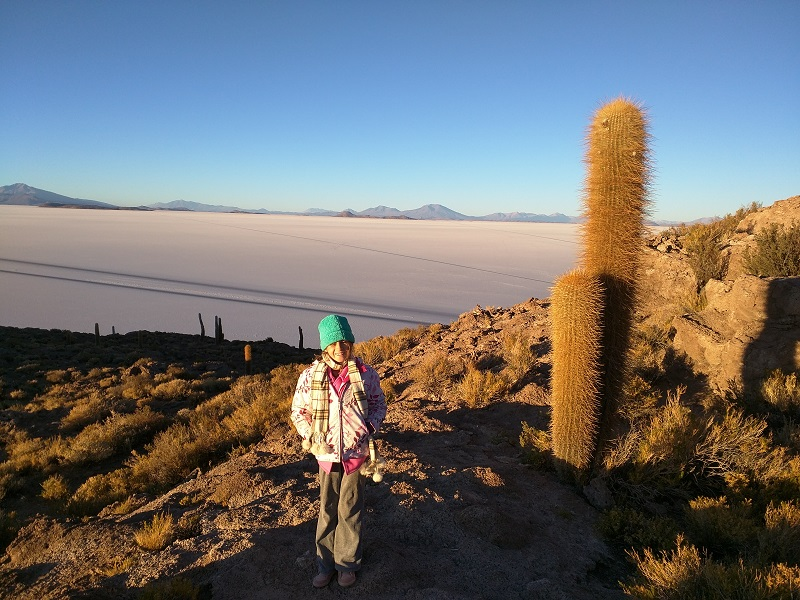 The Salar de Uyuni from Incahuasi Island at sunrise