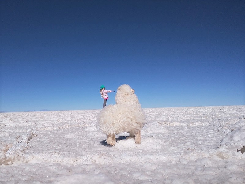 My daughter riding her llama The Salar de Uyuni