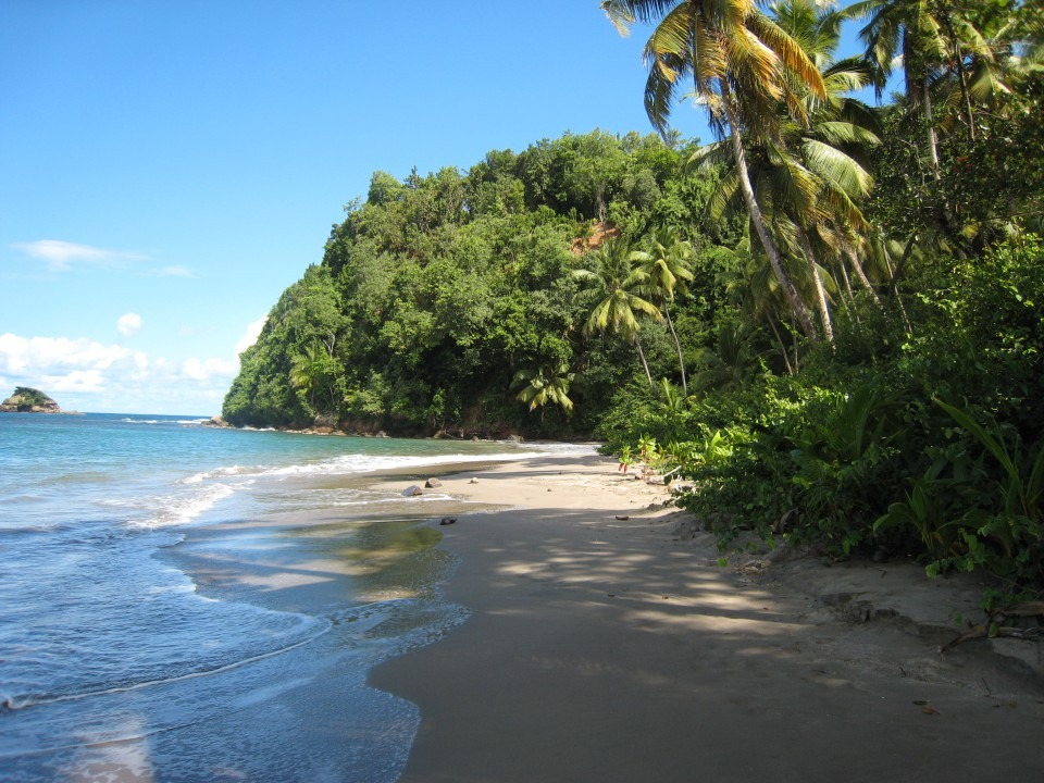 Commonwealth of Dominica - Corporate Solutions Ltd (CSL)