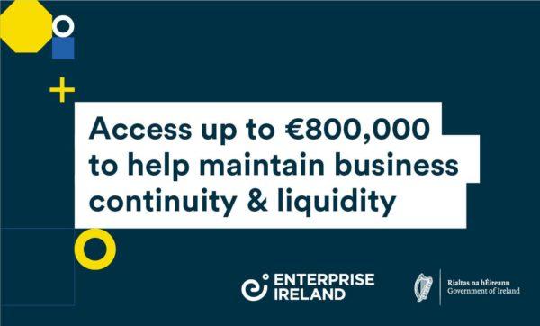 Enterprise Ireland's New Sustaining Enterprise Fund