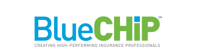 Corporate Synergies BlueCHiP Sales Training Program