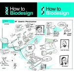 Webinar // HOW TO BIODESIGN #12 @BlueCityLab (NL) // Growing mycelium in and outside a bioreactor
