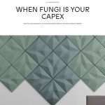 Interview & Article // House of Beautiful Business & The Antidisciplinarian // When Fungi is your CAPEX