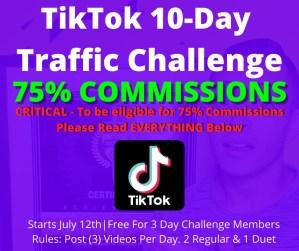 10-Day TikTok Challenge