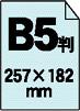 B5判 257×182mm