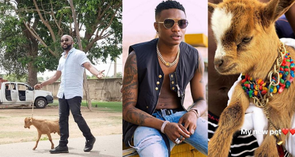 Banky W follows in Wizkid's footsteps as he takes a stroll with a goat