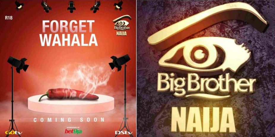 Organizers of BBNaija reveals when the 2019 edition of the show would start