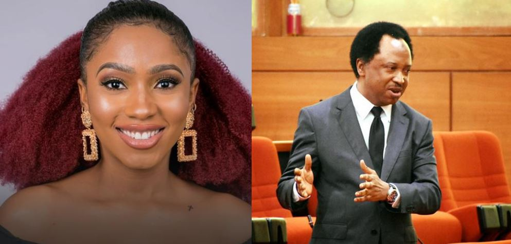 Senator Shehu Sani reveals who he is now supporting to win BBNaija after Khafi and Tacha's exit