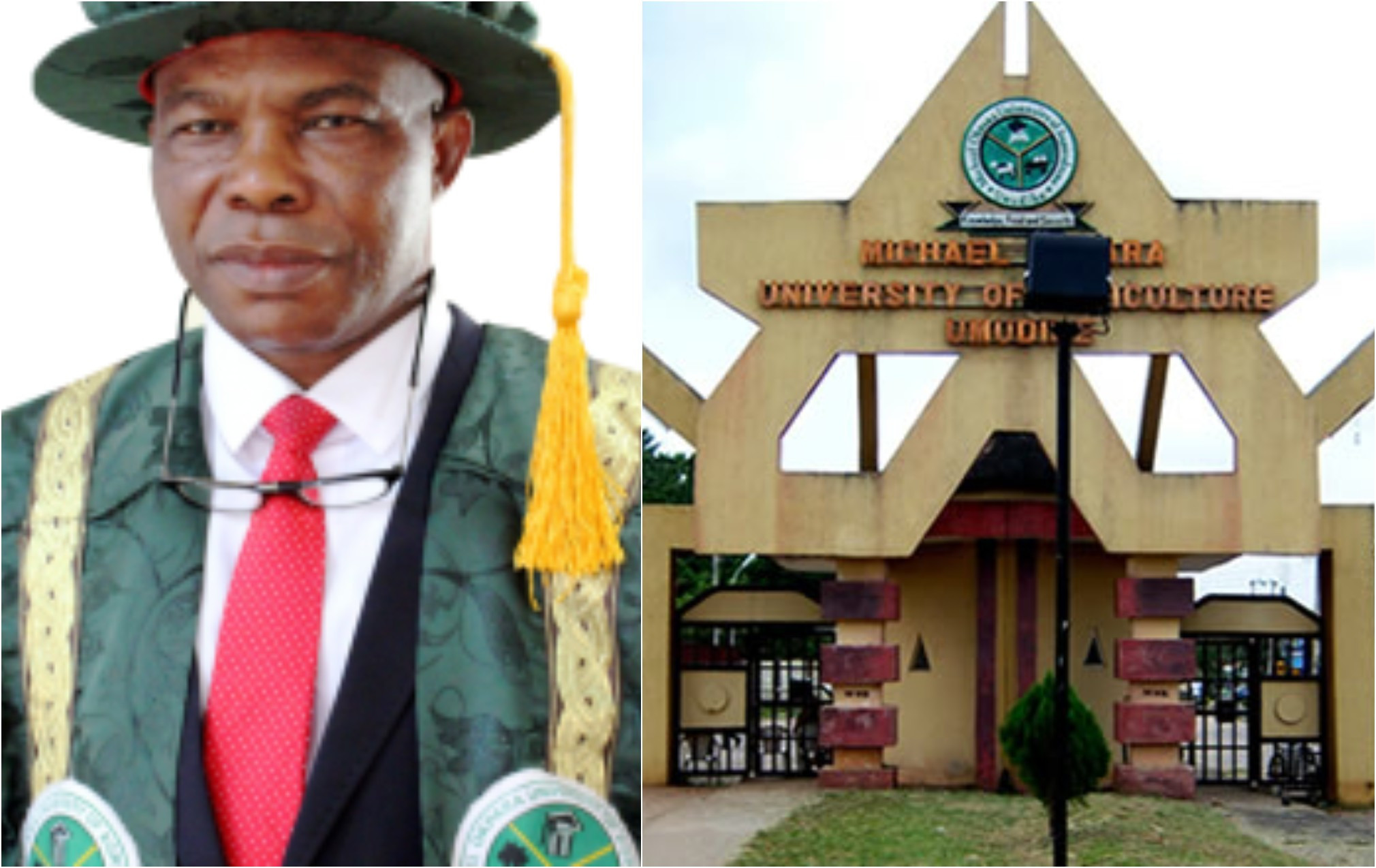 Vice Chancellor accused of impregnating 300-level Accounting student