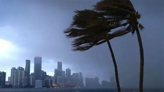 Os primeiros ventos do furacão Irma começaram a chegar à Flórida na tarde deste sábado