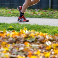 Próximas carreras octubre noviembre y diciembre 2019